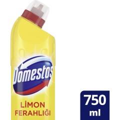 Domestos Yoğun Kıvamlı Çamaşır Suyu Limon Ferahlığı 750 ml
